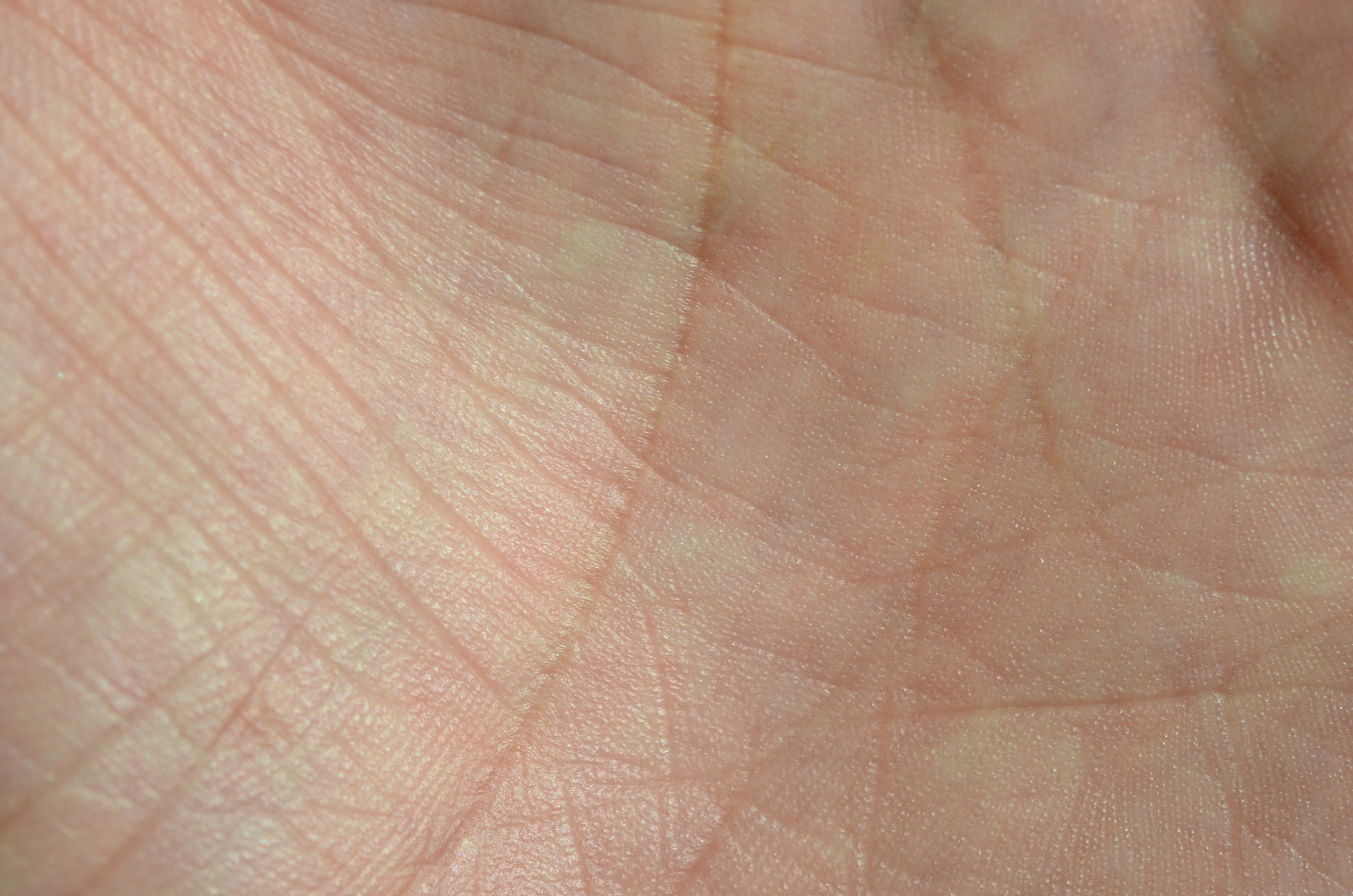 Close up of human hand skin