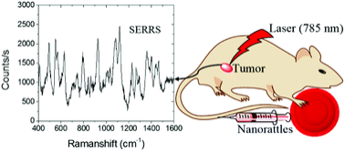 Left shows a spectrum generated from detecting a mouse tumor with technology
