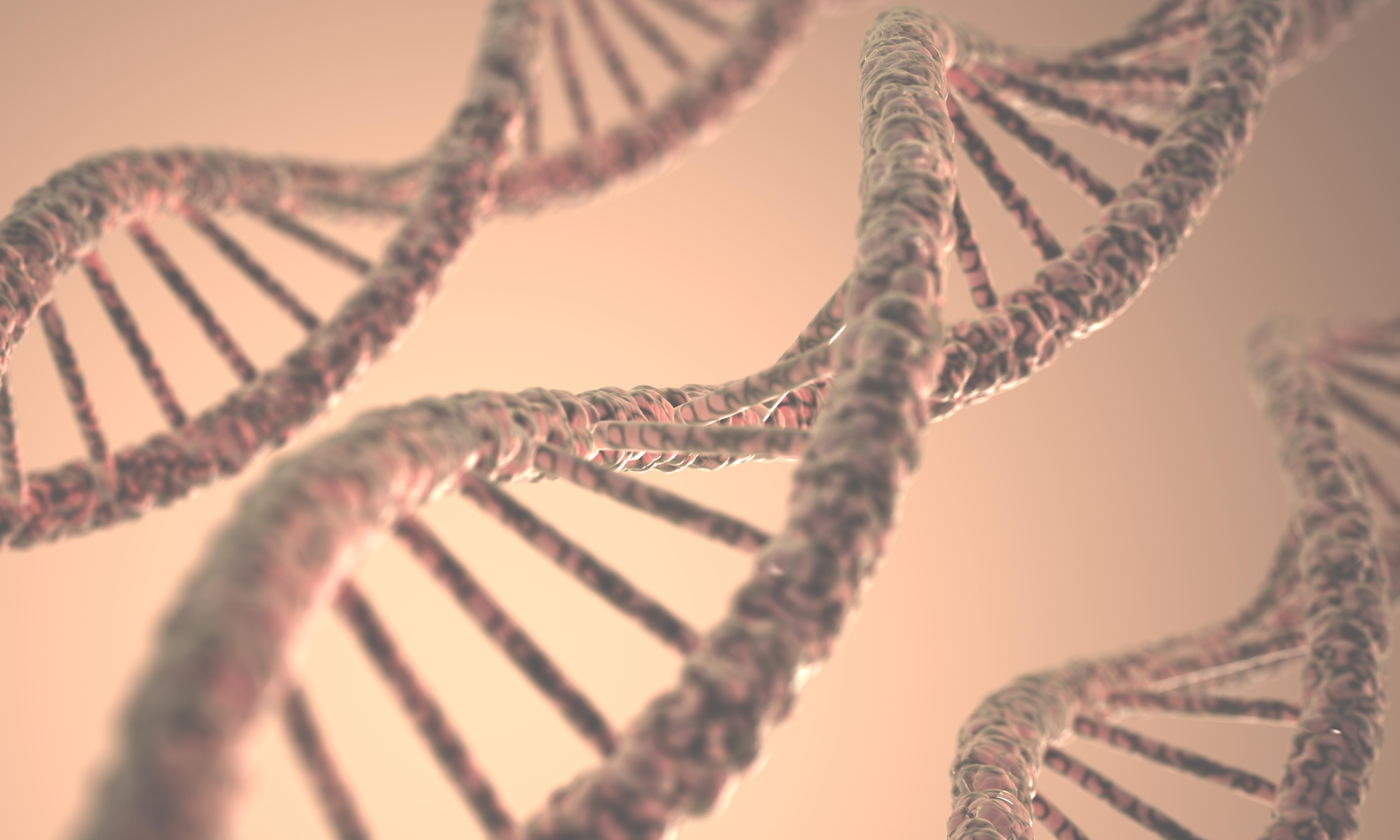 3D illustration of DNA